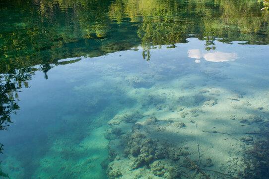 Nature Reflected on the Lake. Plitvice Lakes National Park, Croatia