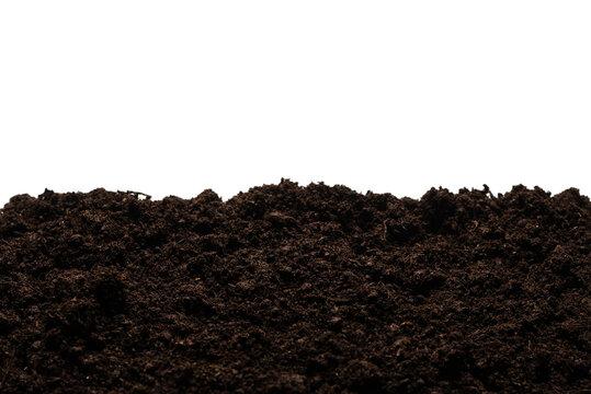Black land for plant.
