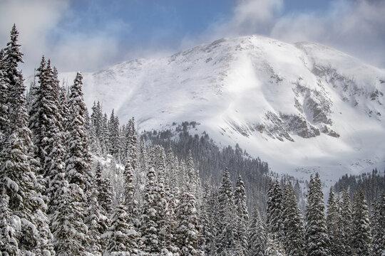 USA, Colorado, Loveland Pass. Fresh snow after spring storm.
