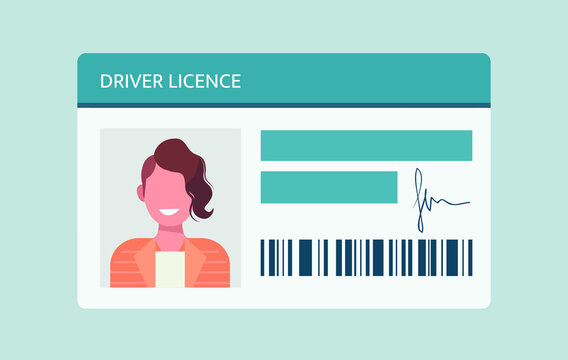 Driver license card with man on the photo and ID number. Vector illustration