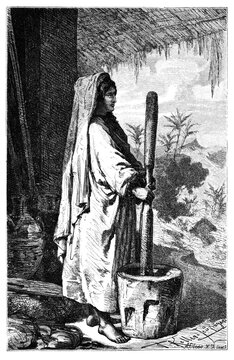Farmer village woman milling rice. Culture and history of Asia. Vintage antique black and white illustration. 19th century.
