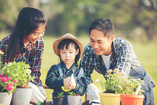 Family child girl helping parent care plant flower in garden. Young people mother, father and daughter gardening outdoor sunny nature background