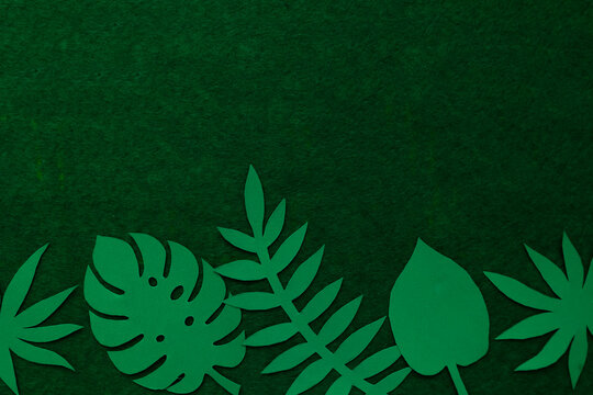 Abstract background from paper tropical leaves.