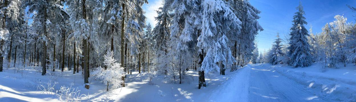 Panorama verschneiter Thüringer Wald