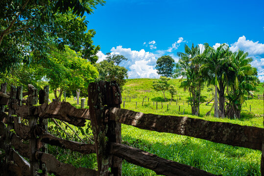 Old wooden farm fence to nature background