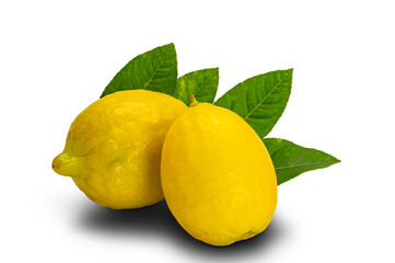 Fototapete - Closeup lemons with leaves isolated on white background with clipping path.