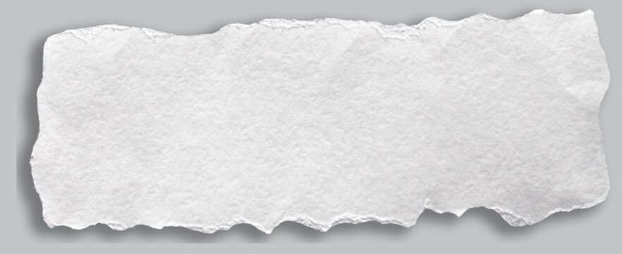 A long piece of watercolor paper with a ragged edge
