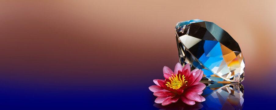 image of beautiful diamond stone and lotus flower close up