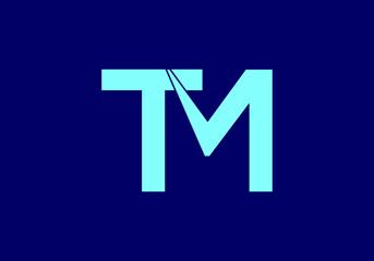 Fototapeta Initial Monogram Letter T M Logo Design Vector Template obraz