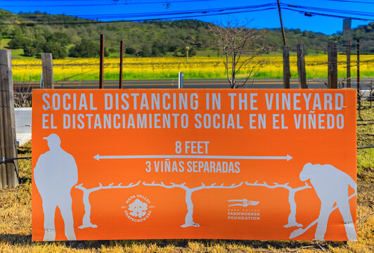 Social distancing sign during the COVID-19 pandemic with grape vines at a vineyard in Napa Valley, California