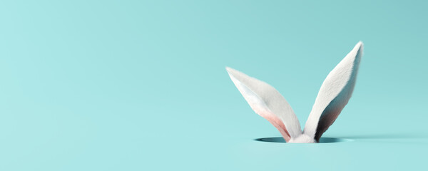 White rabbit ear on pastel blue background. Easter day. 3d rendering