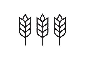 Fototapeta Wheat or barley outline icon. Grain symbol. Vector illustration.