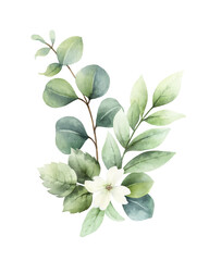 Fototapeta Watercolor vector hand painted bouquet with green eucalyptus leaves and flowers. obraz