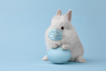 Easter bunny rabbit in corona virus face mask