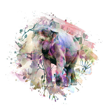 elephant in africa color art