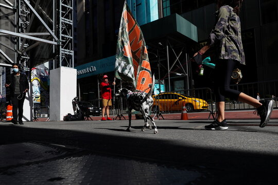 A supporter of former U.S. President Donald Trump holds a flag across from Trump Tower as people walk wearing protective face masks along 5th avenue in the Manhattan borough of New York