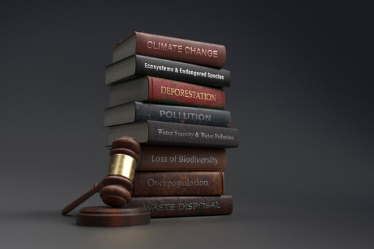 Environmental legislation textbooks next to gavel