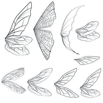 Collection of vector light wings for design isolated on white