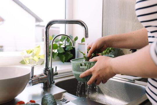 Woman washing green salad leaves in kitchen in sink under running water