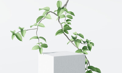 Obraz White product display podium with nature leaves and branches. 3D rendering - fototapety do salonu