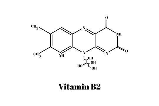 Formula of chemical structure of vitamin B2 .Vector EPS 10.