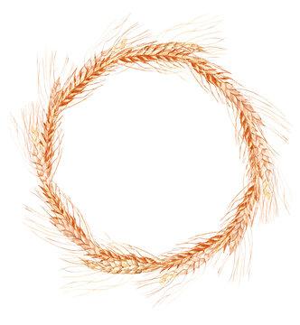 Watercolor wheat, oatmeal, barley clipart. Wheat wreath clipart for boho wedding, backery logo, farm clipart, Bread and bakery png