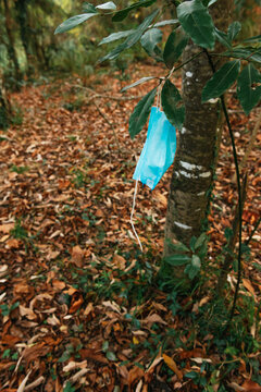 High angle of used disposable medical mask hanging on branch of tree in forest showing concept of environmental pollution