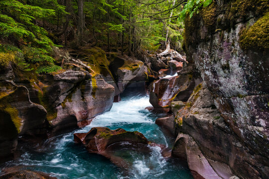 peaceful flow of water in Avalanche Creek passing Avalanche Gorge in Glacier National Park in Montana.