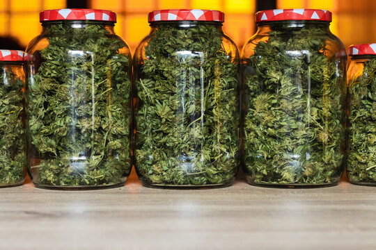 Glass jars filled with green marijuana buds and placed in row on wooden table