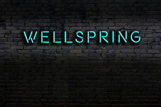 Night view of neon sign on brick wall with inscription wellspring