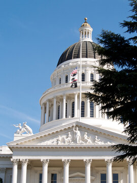 California State Capitol Building with Flags Flying,Framed by Trees