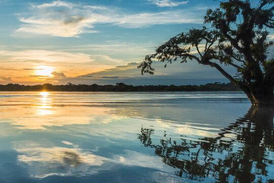 Cuyabeno sunset Laguna Grande