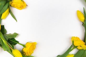 Fototapeta yellow flowers tulips and roses on a white background obraz