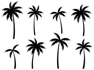 Black palm trees set isolated on white background. Palm silhouettes. Design of palm trees for posters, banners and promotional items. Vector illustration - fototapety na wymiar