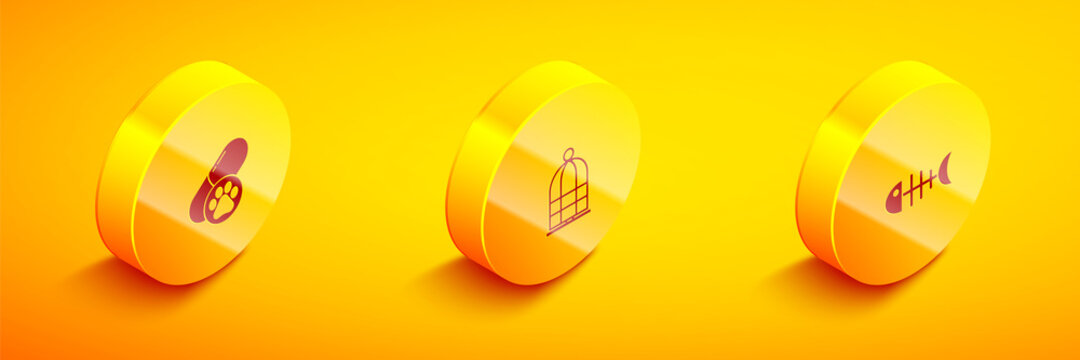 Set Isometric Dog pill, Cage for birds and Fish skeleton icon. Vector.