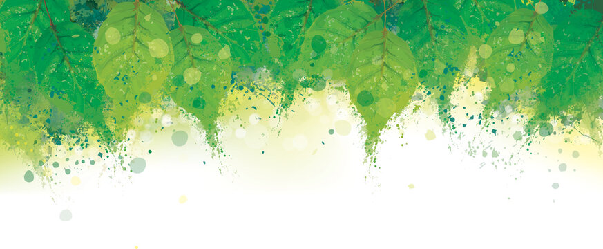Vector abstract green leaves border. Grungy nature background.