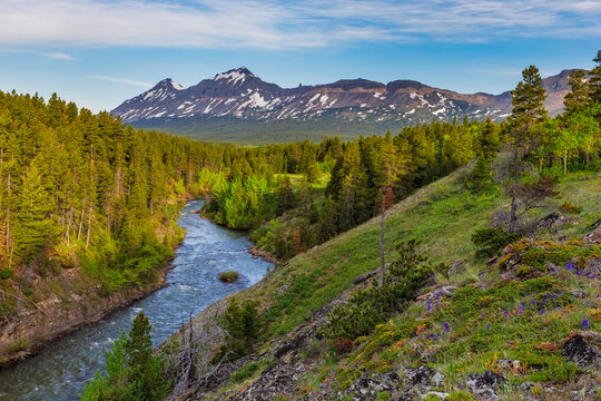 The South Fork of the Two Medicine River in the Lewis and Clark National Forest, Montana, USA