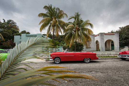 Old car on streets of Havana with beatiful palm trees in background. Cuba