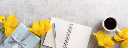 Concept of Mother's day holiday gift idea with yellow tulip flower on gray background