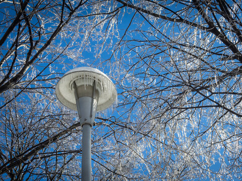 Lampost with ice in a Beautiful winter landscape