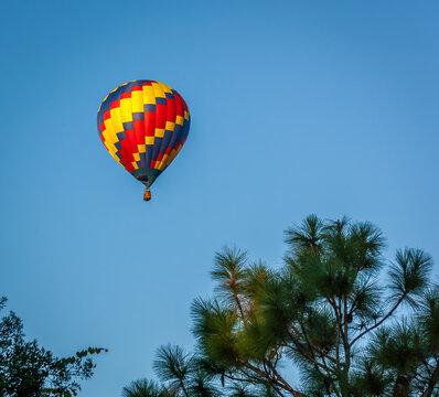 Balloons fly right over our house on a fairly regular basis in Wesley Chapel, Florida..