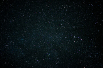 Obraz A star-filled sky with trees in the foreground - fototapety do salonu