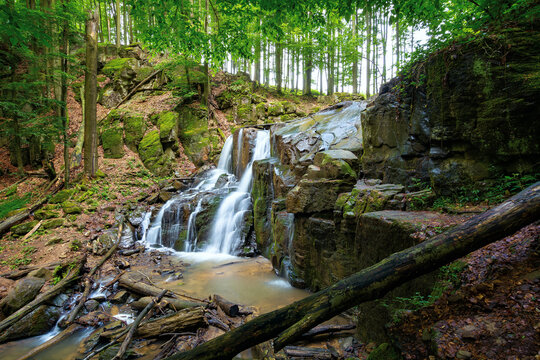 wild waterfall skakalo in spring. scenic travel destination of mukachevo region transcarpathia, ukraine. cold water fall out of the rock. concept of beauty and freshness in nature