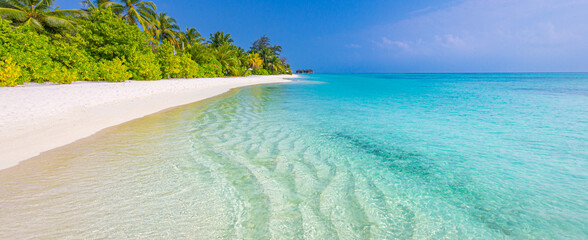 Tranquil beach scene. Sunny exotic tropical beach landscape. Design of summer vacation holiday concept. Luxury travel destination, idyllic nature scenery with palm tree, ocean sea horizon. Inspire