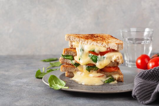 grilled cheese spinach and tomato sandwich on concrete background