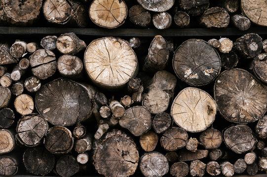 Stack of dry logs on shelves