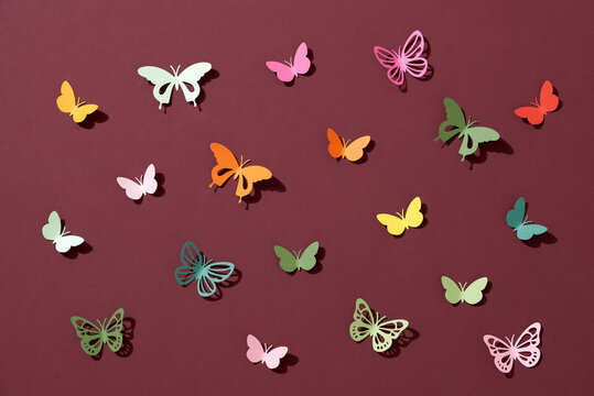Butterfly paper cut art on dark red background