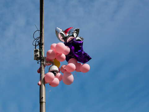 Pink Balloons on a Lamp Post