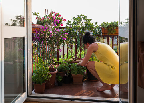 Woman taking care of plants on her balcony