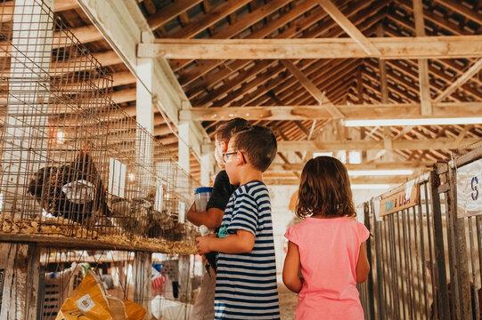 Three siblings looking at animals in a barn.